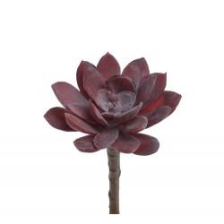 Sukulent burgundy sztuczna roślina do dekoracji i budowy wystroju terrarium Tropical Terra