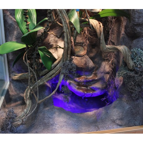 CURLY MOSS - Naturalny mech suszony do dekoracji terrarium