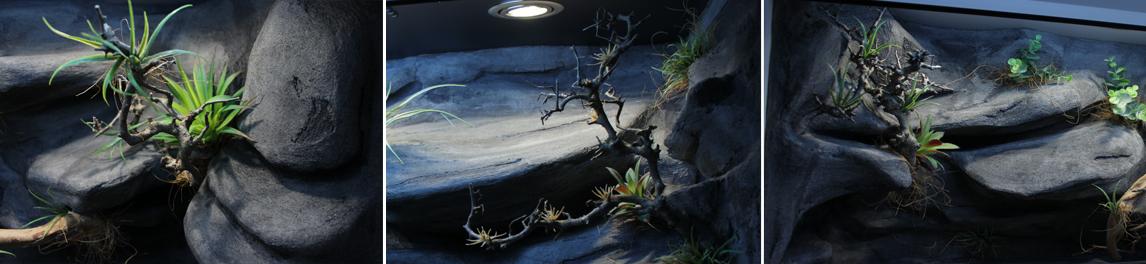gałązka wrzośca - inspiracje Tropical Terra - przykład aranżacji